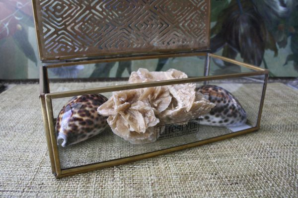 Glazen schatten bewaardoos met brass bewerkte deksel