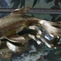 Ornament Tropische Vis M